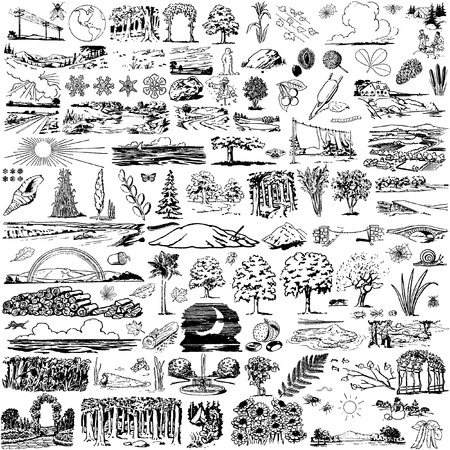 the collection of nature view`s silhouettes Vector