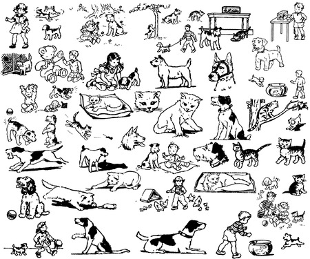 the set of pets in different poses Vector