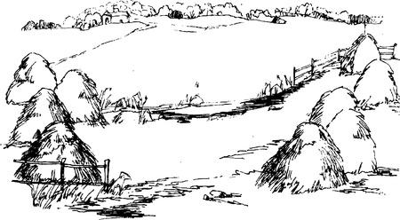 haystack: field