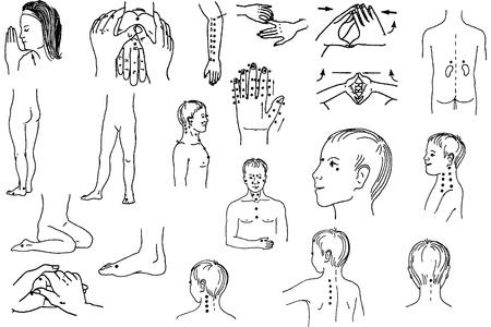masaje corporal: masaje corporal Vectores
