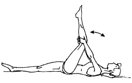 calisthenics: gymnastics