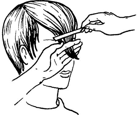 hairdo: hair-do