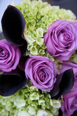 purple rose: Bunch of Green Leaves and purple roses