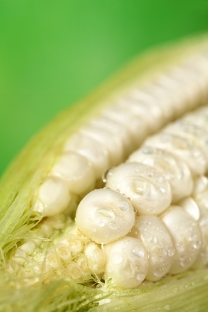 corncob: Fresh raw white sweet corncob sprinkled with water (Selective Focus, Focus on the first two corn kernels) Stock Photo