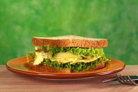 Scrambled eggs sandwich with fried onions and lettuce (Selective Focus, Focus on the front of the sandwich) photo