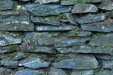 background or Texture of a Dry Stone Wall Covered with Lichens