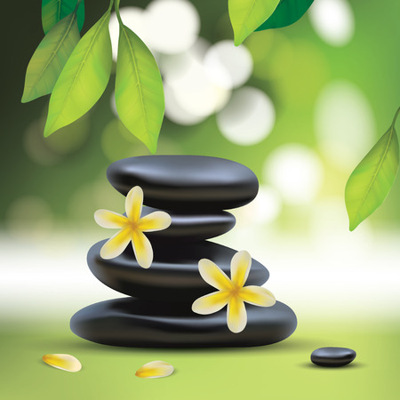 aroma therapy: Vector Beautiful Spa Composition With Zen Stones