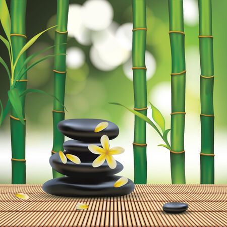 pozo petrolero: Vector Hermosa Composición Spa Con Piedras Zen