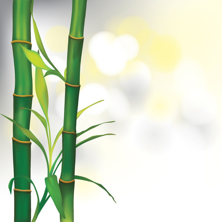 ayurveda: Vector Beautiful Spa Background with Bamboo