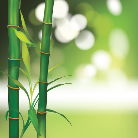 feel good: Vector Beautiful Spa Background with Bamboo