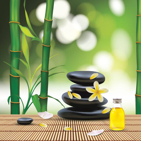 bamboo therapy: Vector Beautiful Spa Composition With Zen Stones