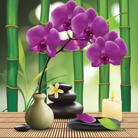 zen attitude: Spa Composition Avec Zen Stones et Orchid Illustration