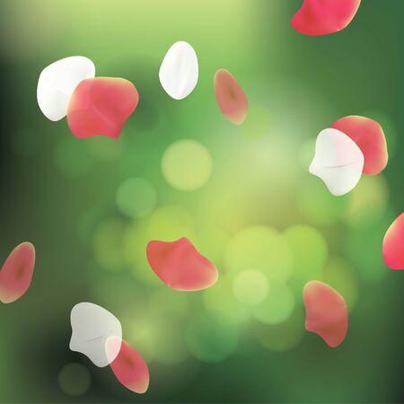 petals: Spa Background with Petals