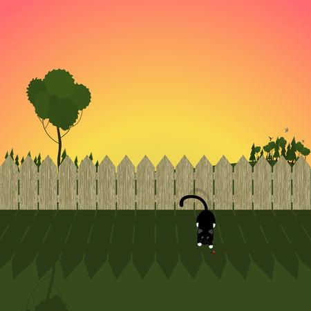 summer landscape. illustration of a fence, a cat and ladybug on sunset (sunrise) background