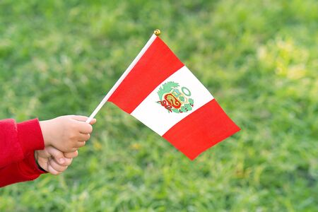 Hands of kid girl holding Peru flag. Independence Day concept. Green grass background.