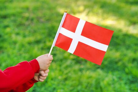 Hands of kid girl holding Denmark flag. Independence Day concept. Green grass background. Standard-Bild