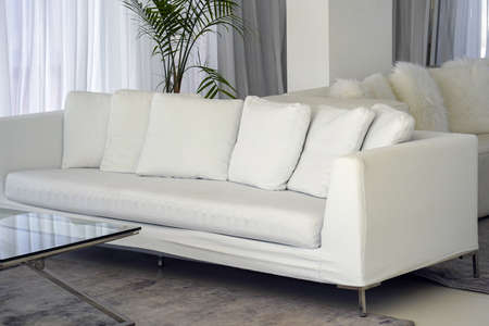 Living room with white sofa in hotel. White concept living room interior. Modern sofa in luxury villa.