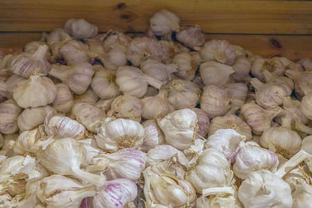 Heads of white purple garlic for sale in a basket display at market. A bunch of white garlic heads. Vitamin healthy way food spices. Selective focus 免版税图像 - 153150216