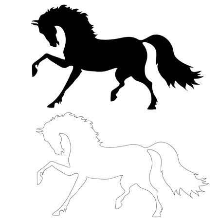 het paard in beweging op een witte achtergrond, het silhouet en de lijn