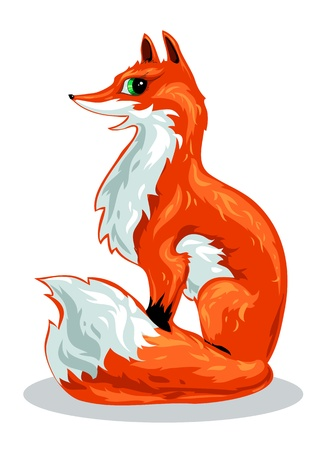 red Fox sits on a white background Vector