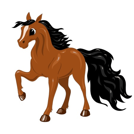 funny brown horse with a black mane and tail