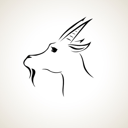 lines: vector stylized figure of a goat