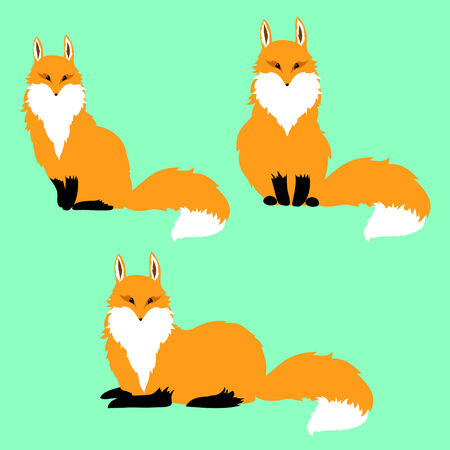 cunning: three red foxes on a blue background Illustration