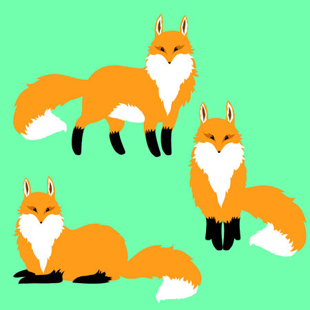 three red foxes on a blue background Illustration