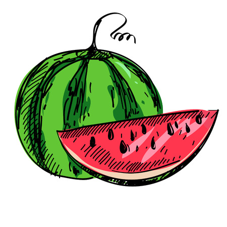 flavorful: illustration of ripe watermelon isolated