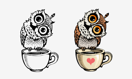 Cute owls collection color and line isolated on white. For coloring books, posters, print, t-shirt design element