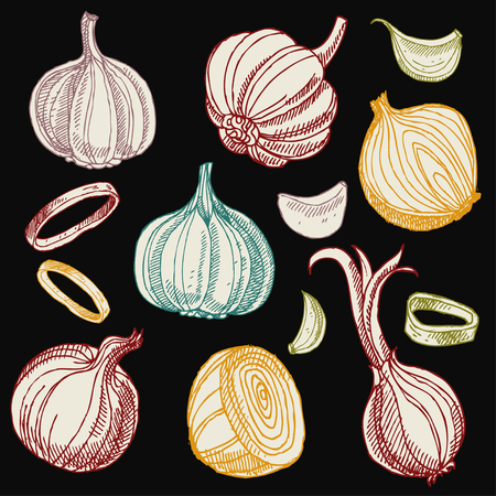 Hand drawn garlic and onions.