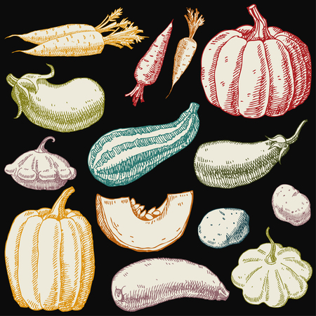 Set of hand drawn vegetables. Carrots, pumpkin, zucchini, squash, eggplant, potatoes. Çizim