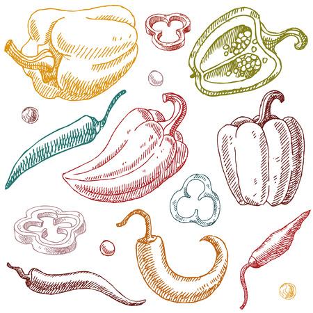 Hand getrokken groenten Doodle set vectorillustratie