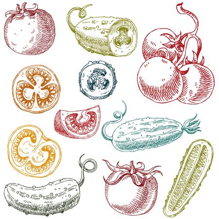 Set of hand drawn vegetables vector illustration Çizim