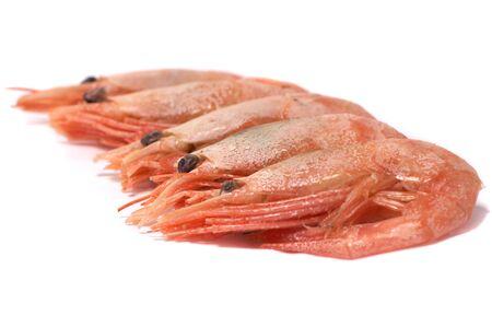 chitin: Shrimps on a white background
