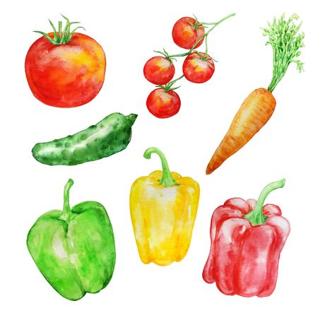 watercolor set vegetables green red juicy bright on a white background