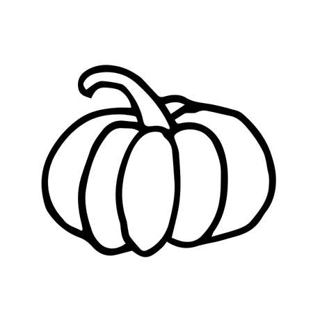 illustration big pumpkin autumn harvest in doodle style hand-drawn black and white