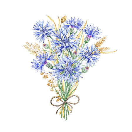 A bouquet of wildflowers of cornflowers and dried flowers. Delicately blooming cornflower. Cornflower blue. Watercolor background