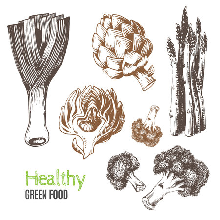 broccoli: Hand-drawn vegetables. Vector illustration includes leeks, broccoli, asparagus, artichoke. Ideal for use in organic food industry, healthy green food market, vegetarian restaurant.