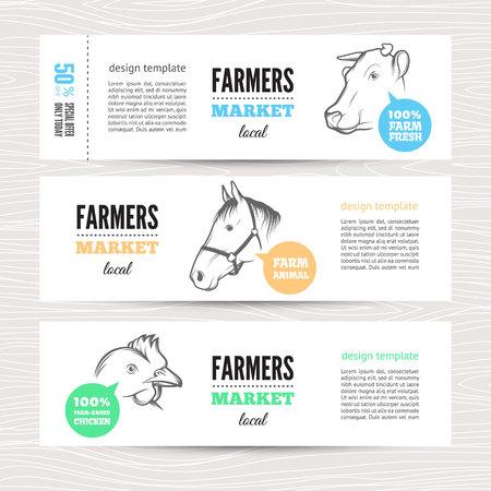 vaca: Conjunto de banderas horizontales con las vacas, ovejas y pollos. Perfecto para la publicidad mercado de la granja, agricultura, otros tipos de negocio de productos bio. La identidad de negocios para los productos bio, la industria agrícola.