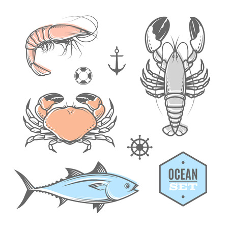 Seafood vector nautical set with seafood. Illustration for web, print industry, brand advertising.