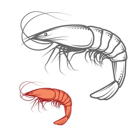Garnalen die op wit, foto-realistische vectorillustratie Stock Illustratie