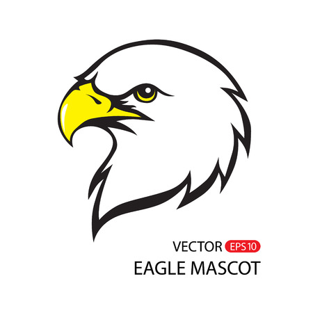 american sport: Vector Bald Eagle or Hawk Head Mascot Graphic. Vector image of an eagle on white background
