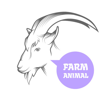 goat head: Vector illustration of goat, symbol of 2015 on the Chinese calendar. Silhouette of goat head. Vector emblem on white background for farming industry. Illustration
