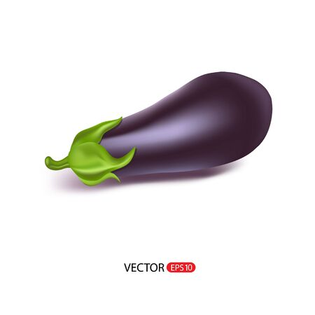 greengrocery: Vector illustration of big fresh realistic eggplant, or guinea squash isolated on white background.