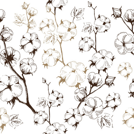 Organic stems of cotton plants on white background, seamless pattern template. Vector illustration, modern hand draw style.