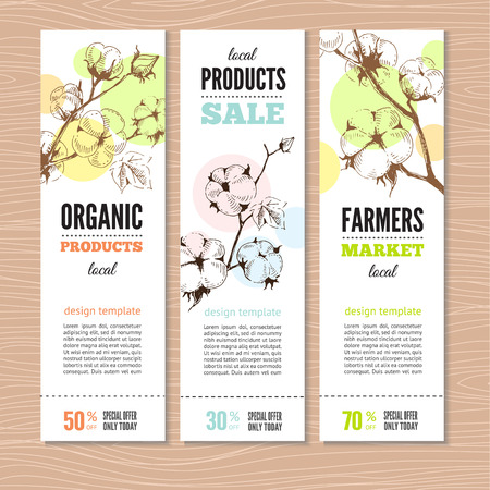 organic cotton: Set of vector hand drawn banners with stems of cotton plants. Perfect design for farm market advertising and bio product business. Business identity for organic products and agricultural industry.
