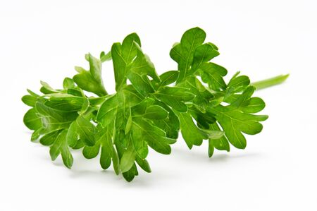 garnishing: Fresh parsley isolated on a white background