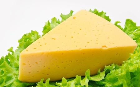 queso cheddar: Pedazo de queso en la lechuga aislada en el fondo blanco