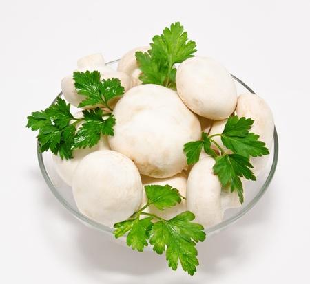 agaricus: Champignon mushroom white agaricus witn parsley in the bowl isolated